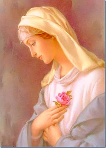 Mamá María Reina del Cielo y tierra