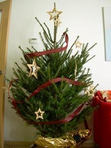 arbol de Navidad de Lourdes, intento II