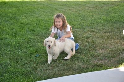 New Puppy 019