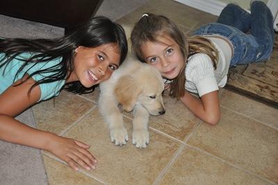 New Puppy 021