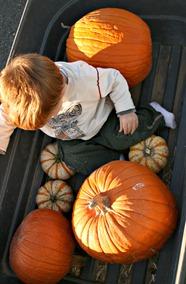 Wes w.Pumpkins