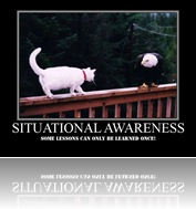 Situational Awareness2