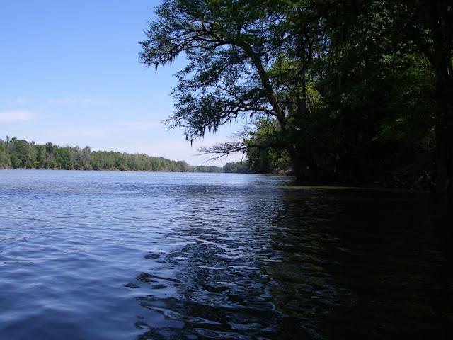 Wide Santee River