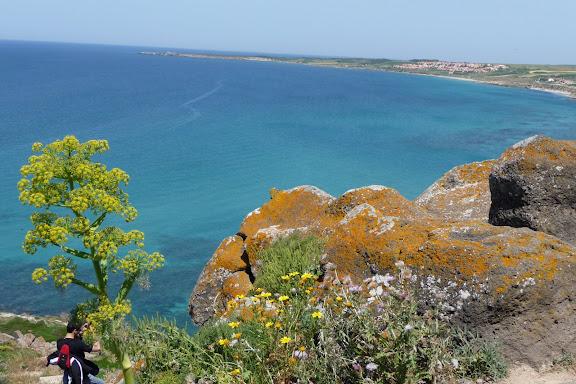 CR de notre petit sejour en Sardaigne P1010405
