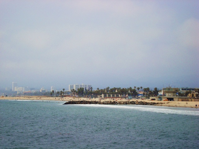 venice beach 016