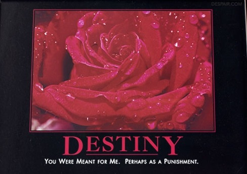 Destiny Poster @ www.despair.com