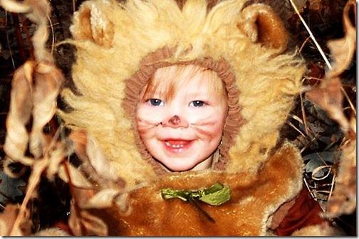 lioncostumesmilingchild800x533-main_Full