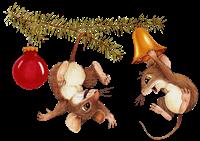 ratones conejos misimagenesdivertidas.blogspot (14)