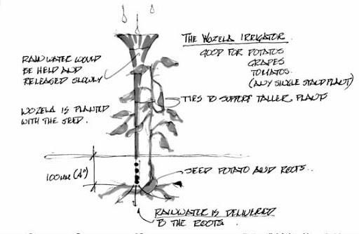 bruno rezende, coluna zero, vuvuzela, reciclagem, criatividade, corneta, reaproveitamento