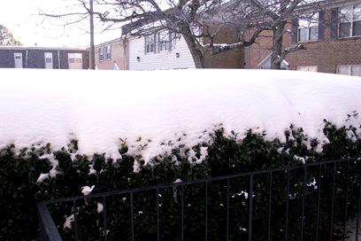 Virginia Beach Snow Storm