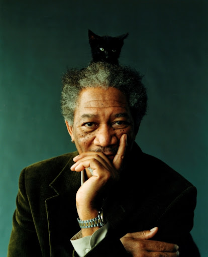 Morgan Freeman and black cat