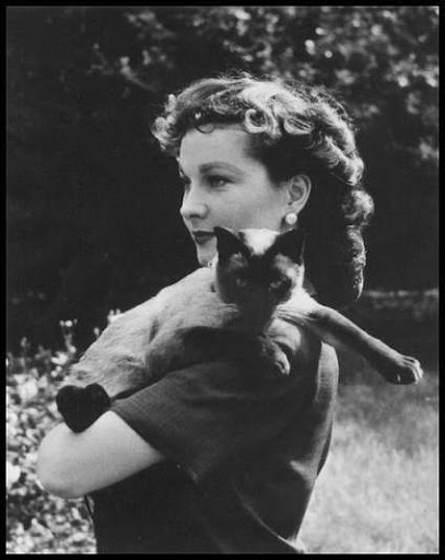 Vivien Leigh celebrity and cat
