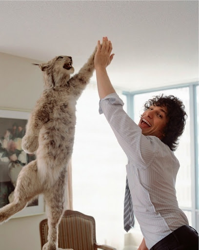 funny bob cat high 5ing with Andy Samberg