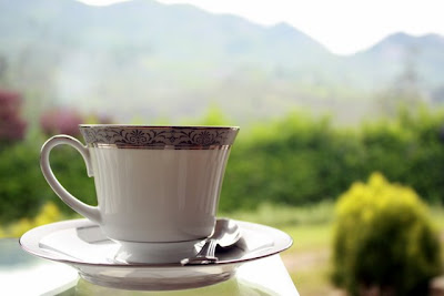Cup of tea at Ceylon Tea Trails in Sri Lanka