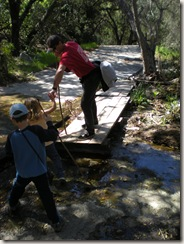 oak canyon hike creek crossing