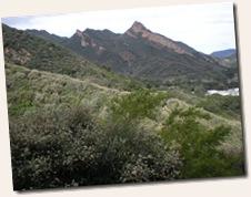 PCTR Malibu Creek-1