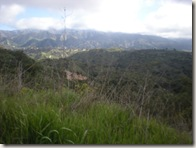 OC Chili Winter Trail Run view