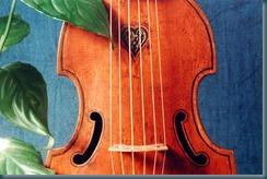 viol2