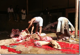 800px-Camel_slaughter