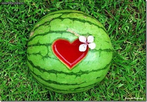 pica4u.ru_1226255170_watermelon_09