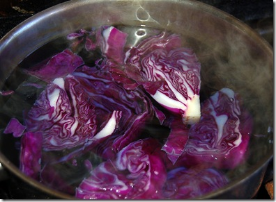 red cabbage dye pot 1
