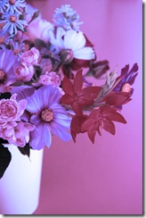 Mitty's flowers 13