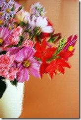 Mitty's flowers 18