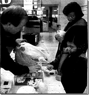 Science Fair 1993