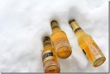 101224_mgd_in_snow