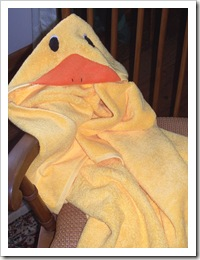Duck Towel_2
