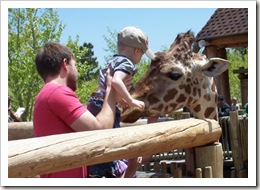 braden & giraffe