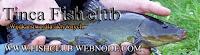 wędkarstwo Tinca fish club