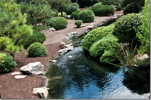 botanic gardens-173