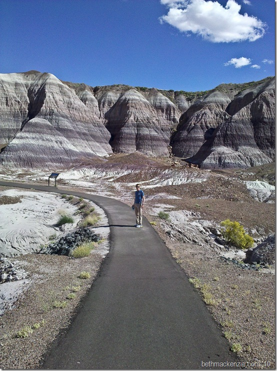 Petrified Forest-2
