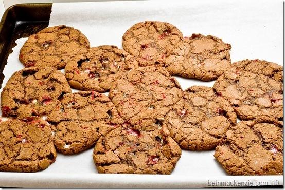ugly cookies-002