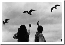 gerard castelo-lopes Escocia-1985-(1)