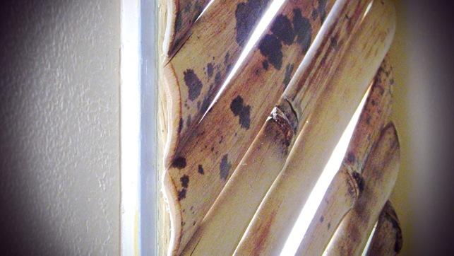 shutters 058_mod