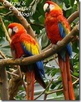 Chirpy & Cheerful Blog Award
