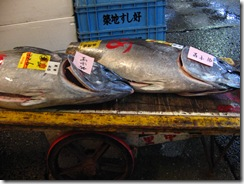 13Japan-FishMarket 018