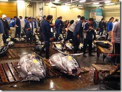 13Japan-FishMarket 020