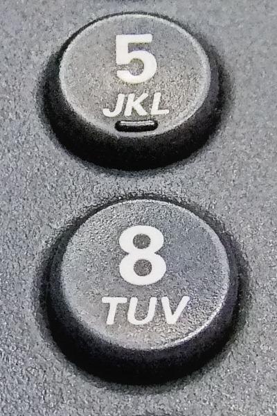 DSCF2151_buttons[1]