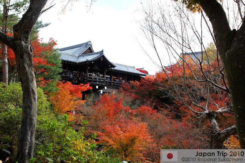 หนึ่งวันในเกียวโต [Koyo 2010]