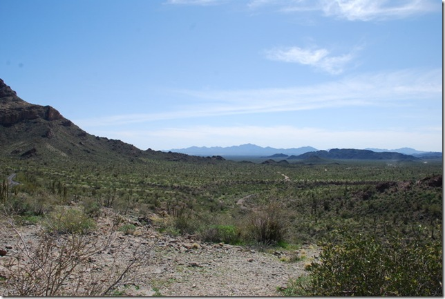 03-05-19 Ajo Mountain Loop - OPCNM 040