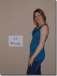14 Weeks (1)