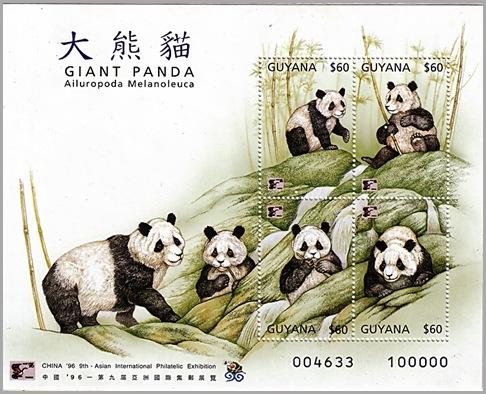 guyana china 96