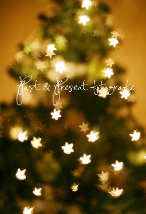 kerstboom enzo 064-2