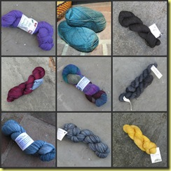 sock club yarn