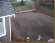 back yard 004