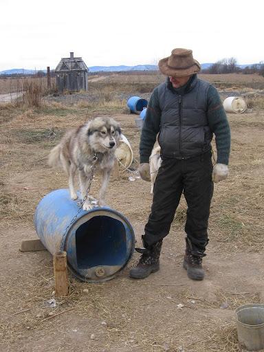 Husky et son maître