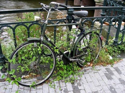 bicycle-parking (4)